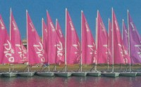 Windsurf and sailing school Vela Fornells in Menorca